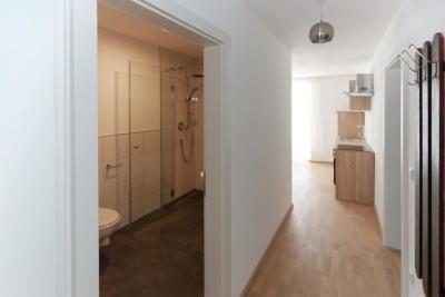 Ferienwohnung Mühlbach, Unterleegut Apartments, Mühlbach am HOCHKÖNIG 8N4A2576 DxO