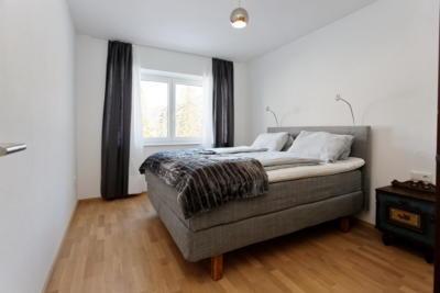 Ferienwohnung Mühlbach, Unterleegut Apartments, Mühlbach am HOCHKÖNIG 8N4A2602 DxO raw