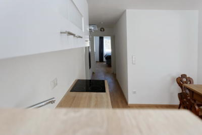Ferienwohnung Mühlbach, Unterleegut Apartments, Mühlbach am HOCHKÖNIG 8N4A2603_DxO_raw