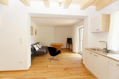 Ferienwohnung Mühlbach, Unterleegut Apartments, Mühlbach am HOCHKÖNIG unterlee ferienwohnungen  049 DxO